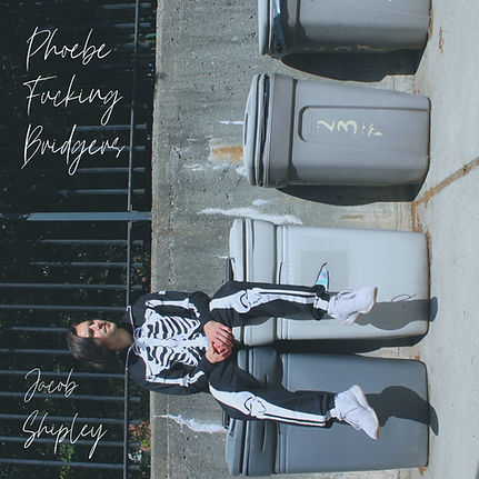 Phoebe Fucking Bridgers VF.JPG