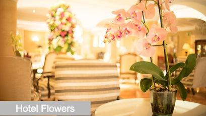 Hotel flowers by xloiflowers
