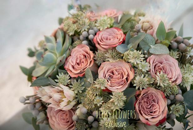 Τριαντάφυλλα Dusty pink με παχύφυτα