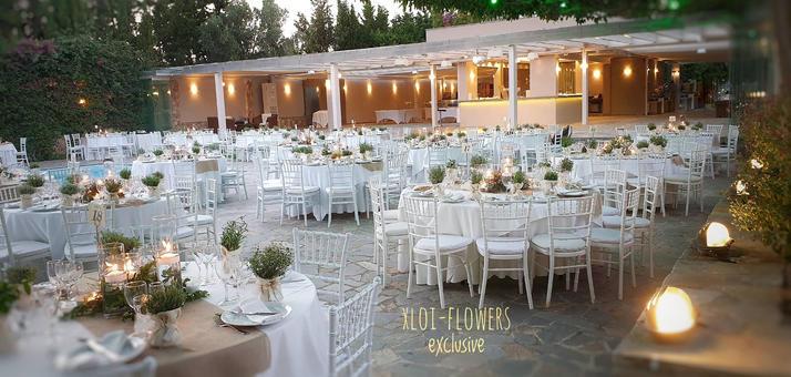 delago wedding