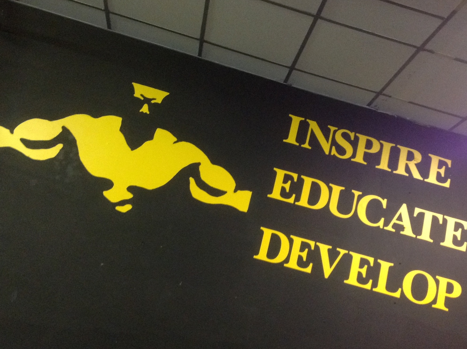 Inspire - Educate - Develop