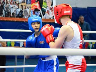 Открытый турнир по боксу