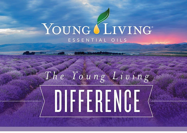 yl_difference_graphic_EN-1%2520(3)_edited_edited.jpg