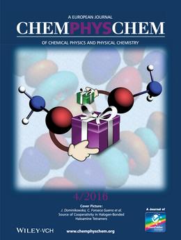 Source of Cooperativity in Halogen‐Bonded Haloamine Tetramers
