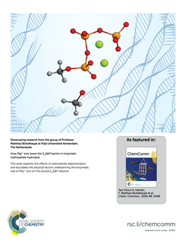 How Mg2+ Ions Lower the SN2@P Barrier in Enzymatic Triphosphate Hydrolysis