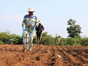 Những trường hợp được miễn, giảm tiền sử dụng đất