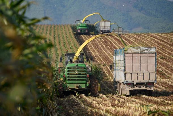 Cần có thị trường chính thức, lành mạnh về đất nông nghiệp