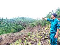 Khánh Hòa: Nhiều bất cập trong giao đất cho hộ DTTS nghèo