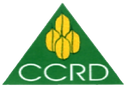 CCRD_logo_white-removebg-preview.png