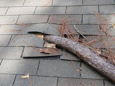 tree limb penetrated roof.jpg