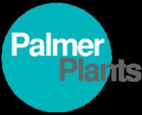 Palmer Plants