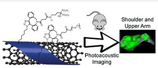 Photoacoustic Image.JPG