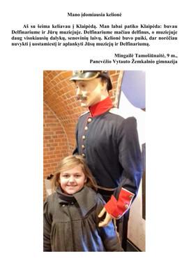 Mingailė Tamošiūnaitė, 9 m. tema-Mano įd