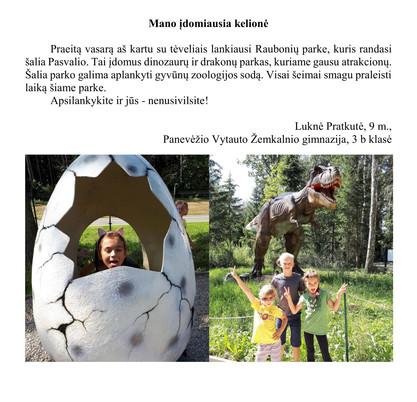 Luknė Pratkutė, 9 m., tema- Mano įdomiau