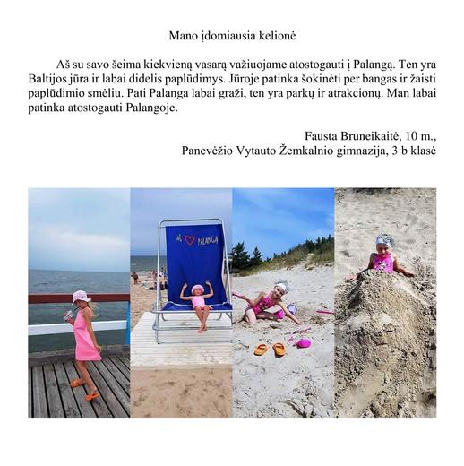 Fausta Bruneikaitė, 10 m. tema-Mano įdom