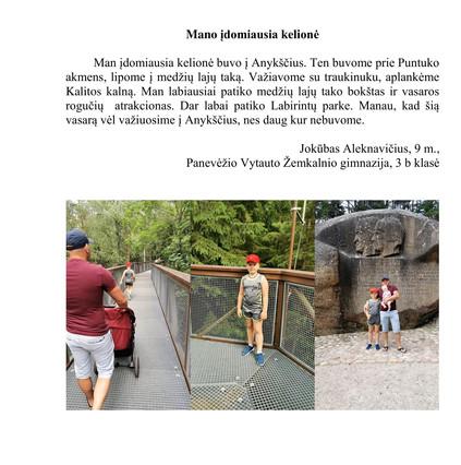Jokūbas Aleknavičius, 9 m. tema-Mano įdo