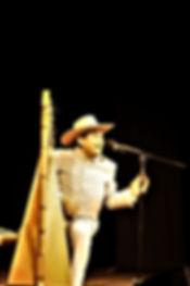 Harfenfestival_7.jpg