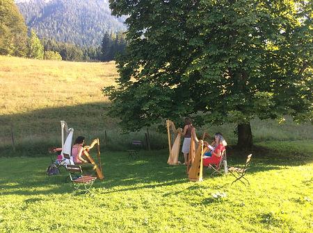 Harfenfestival_2.JPG