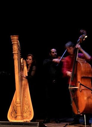 Harfenfestival_9.jpg