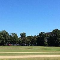 02. Cricket Banner (3).jpg