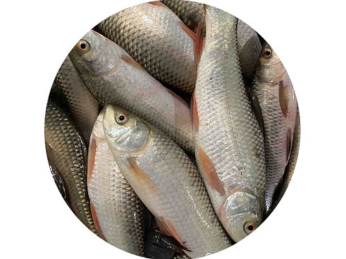 RUI CHARA PONA FISH (1KG)