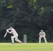 Spot of Cricket