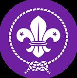 6th-southgate-scouts.png