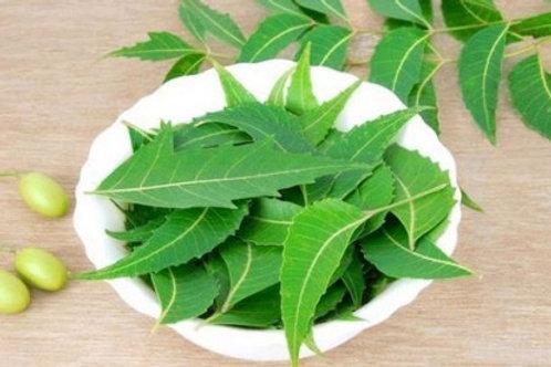 নিম পাতা (neem leaves) ১আটি