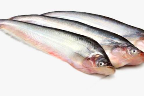 pabda fish (পাবদা মাছ চালানি ) 1KG