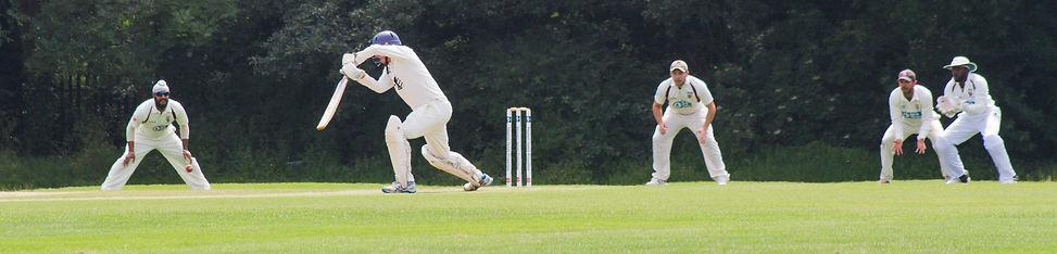 walker-ground-cricket (5).jpg