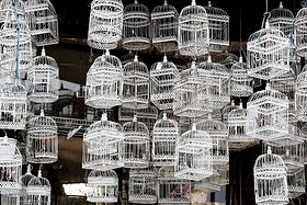 Life-of-Pix-free-stock-bird-cages-white-