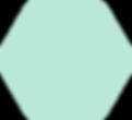 forme_hexa_vert_clair.png
