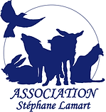 Association Stéphane Lamart