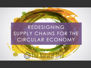 Patrik Sandin spoke about Circular Economy at Global Supply Chain Council's Sustainable Supply C