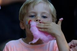 Nolan candy floss