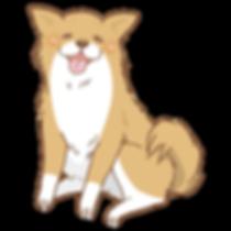 愛犬の介護予防に!WON・WGG | ワンエッグ