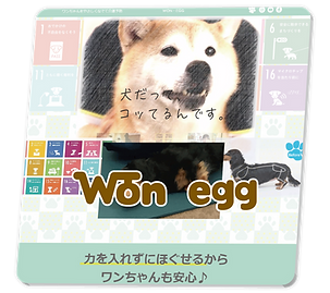 mn_wonegg.png