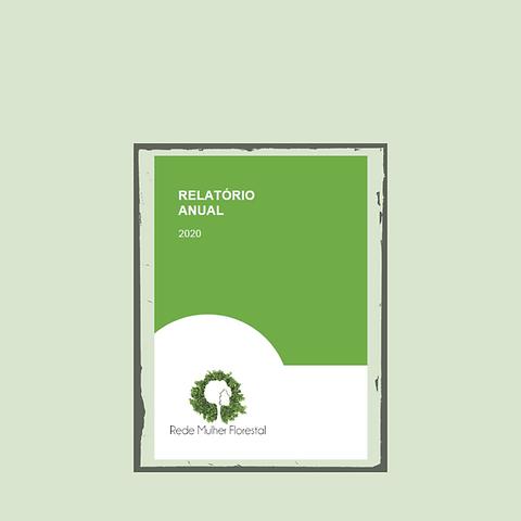 Site_Relatorio 2020 .png