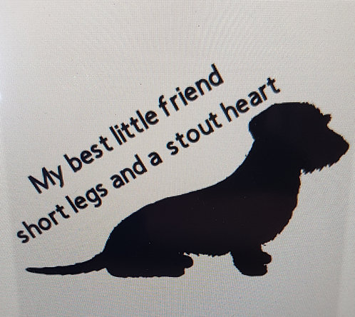 Wire Haired Dachshund T-shirts 3