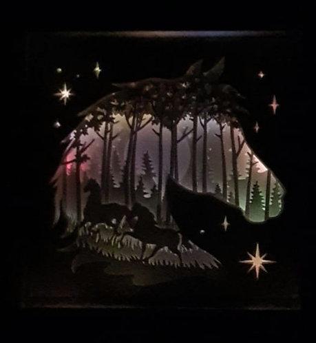 Wild horses shadow box