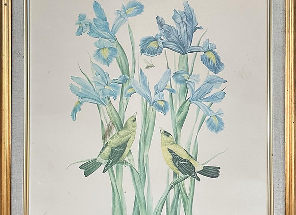 Stunning Print of Jill Fogelsong's 'Goldfinches With Irist' Artwork