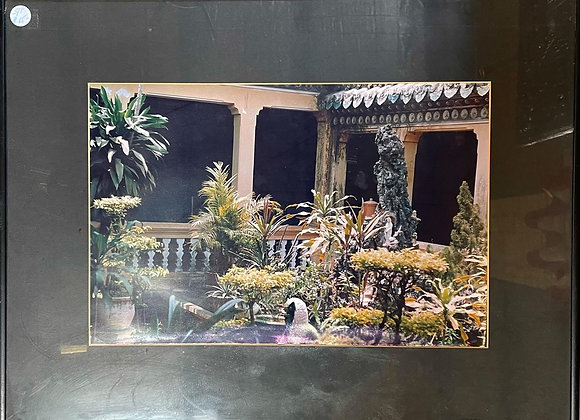 Colourful Framed print of South East Asian Garden