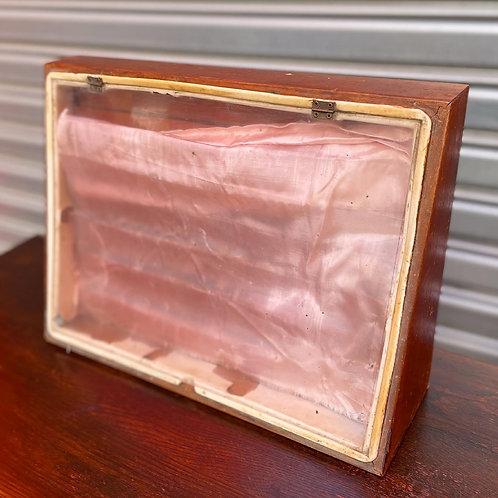Vintage Unique Wooden Storage/Display Cabinet with Plastic Flip Up Door