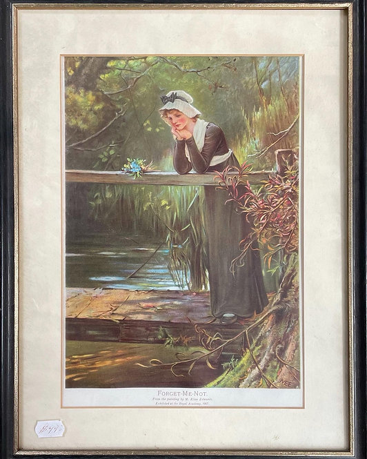 Vintage Print of Forget Me Not from the Painting by M. Ellen Edwards (C.1907)