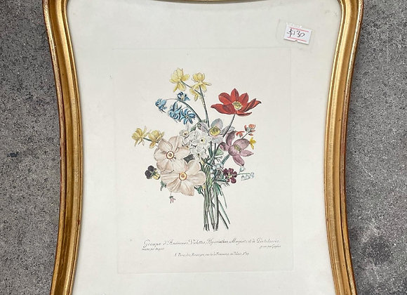 A Pair of Unique Unusual Shape Framed Floral French Prints