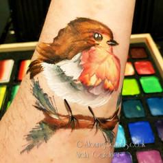 Robin arm face paint