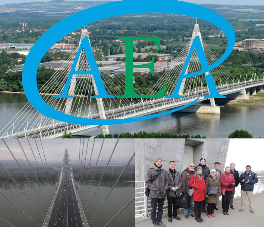 AEA a Megyeri hídon.png