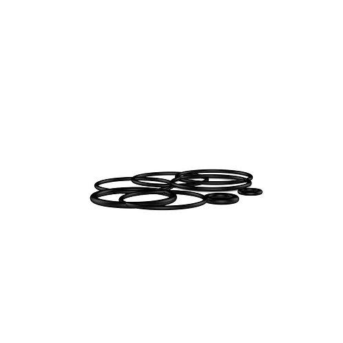 Set O-ring Expromizer  v4