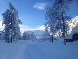 vinter 1.JPG