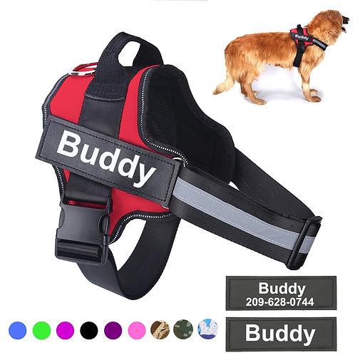 Harnais de chien, réglable, haut de gamme et personnalisé.